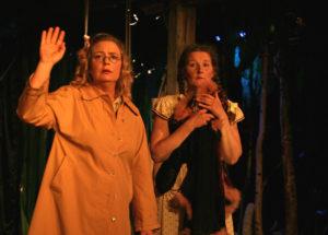 2009- Den utisågade damen