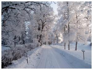 Vinter i Stadra