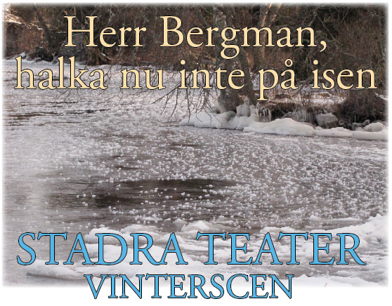 Stadra vinterscen: Herr Bergman, halka nu inte på isen